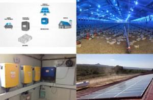 : Electrificación de granja avícola